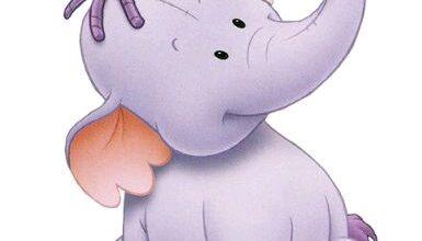 قصة كم يزن الفيل